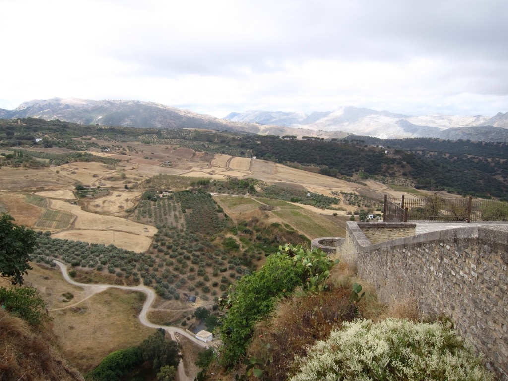 Looking down into the gorge at Ronda